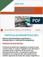 Particulas Mágneticas
