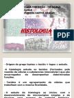 histologia - tecido epitelial