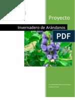 PDN_Cuernavaca_Invernadero_Arándano.pdf
