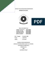 Laporan Tetap Praktikum Bioproses - Morfologi Sel