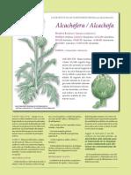 fitoterapia-alcachofa