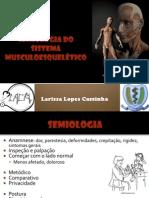 Semiologia musculoesquelético LACM