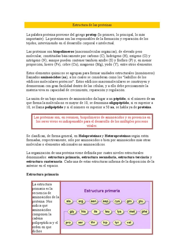 Estructura De Las Proteínas Proteínas Enzima