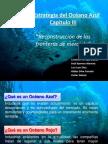 La Estrategia Del Oceano Azul - CAPITULO 3[1]
