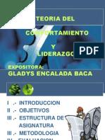 Introduccion de La Teoria Del Comport. y Liderazgo2013