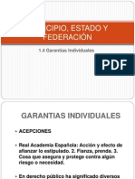 Garantias individuales 2