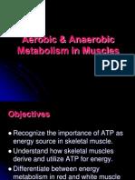 AerobicandAnaerobic MuscleMetabolism