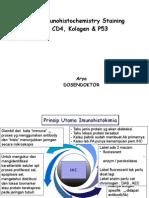 Immunohistochemistry Staining CD4, Kolagen & P53 / Pengecatan imunohistokimia.