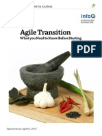 AgileTransition_minibook1.pdf