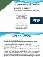 Jute Presentation(2003 Format)