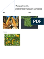 Plantas alimenticias.docx