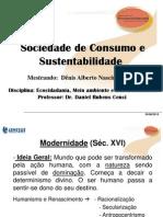 Apresentação Dênis - Consumo e Sustentabilidade - 12.11.2010