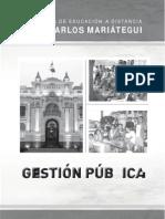Gestión pública I.docx