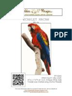 022-Al Scarlet Macaw