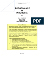 microfinanceinindonesia
