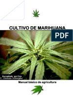 Manual Basico Marihuana.pdf