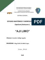 BOTANICA - Modelo de Informe