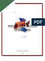 48243597 Proceso de Produccion de Polimeros