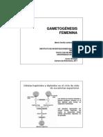 Clase Gametogenesis y Fec 2011