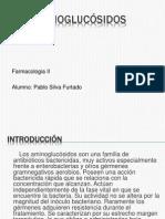 Aminoglucósidos slides