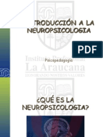 Introduccion Al Estudio de La Neuropsicologia