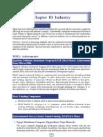 Egypt IPPC -Industry