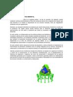 Resumen de la unidad 6 de desarrollo sustentable