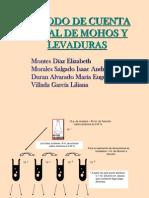 Mohos y Levaduras
