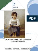 Modulo Teoria Aprend y Enf Psicopedagogicos