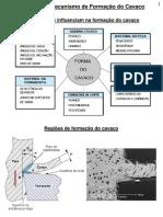 Relatório - Mecanismo de Formação de Cavaco