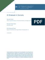 20130829 somalia 120613summary
