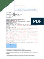 Exercicios Computação Evolutiva e Conexionista