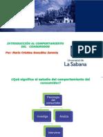 INTRODUCCIÓN AL COMPORTAMIENTO DEL CONSUMIDOR (1)