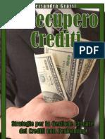 Cap1_Il Recupero Crediti