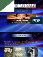 Cocaina.2013