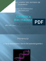 4.GENETICA_BACTERIANA
