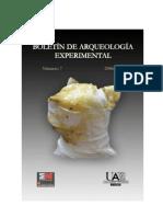 Boletin de Arqueologia Experimental