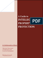 A Guide to Intellectual Property Protection
