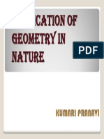 Application of Geometry in Nature