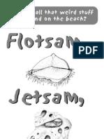 Flotsam and Jetsam Guide