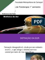 Slide Fisiologia Da Dor