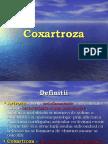 Cox Art Roza