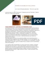 PIRÁMIDE TERAPÉUTICA MODELOS HYGIA y HORUS graficos