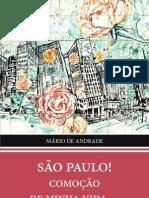 Sao Paulo Comocao de Minha Vida