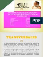 TRABAJO DE DIAPOSITIVAS.pptx