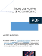 ANTB._ACIDOS_NUCLEICOS[1]