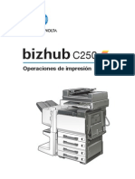 c250 Print Operations 1-1-1 Es