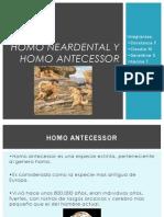 Homo Neardental y Homo Antecessor