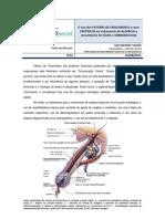 ARTIGO REVISTA ACAO_O uso dos FATORES DE CRESCIMENTO e seus PEPTIDEOS no tratamento de ALOPECIA.docx