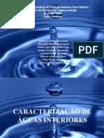 Trabalho:Ecologia Geral-Sistemas lênticos e lóticos